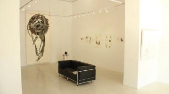 Gallery 2 wide